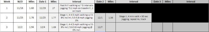 RTR stage II mileage