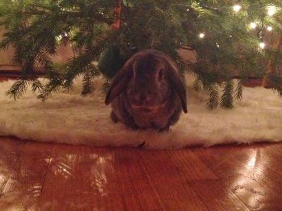 Wilbur Christmas